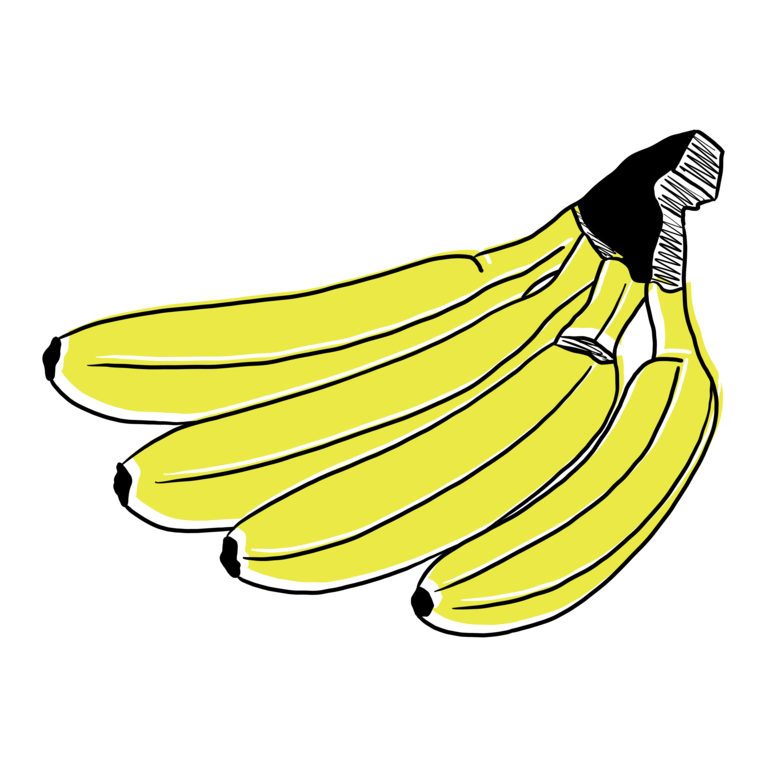 GMF 4 Bananen Illustration